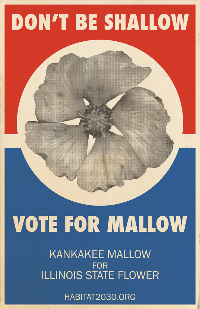 Don't be shallow, vote for mallow!