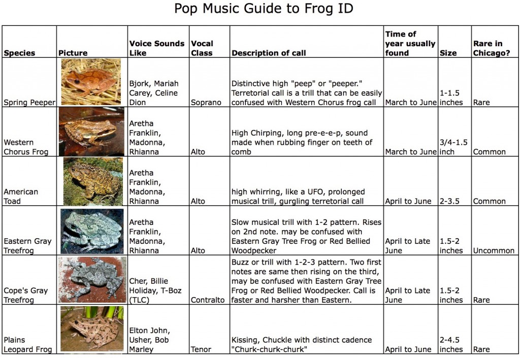 Pop music guide to frogs page 1